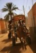 Tunisian Carriage...