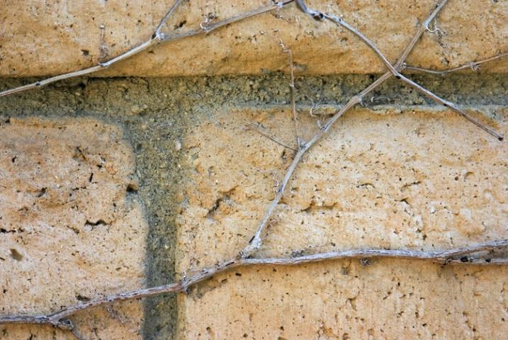 Bricks and Twigs