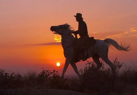 Sunset Southwest Style
