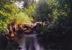 Creek Near Stuart...