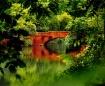 Beautiful reflect...