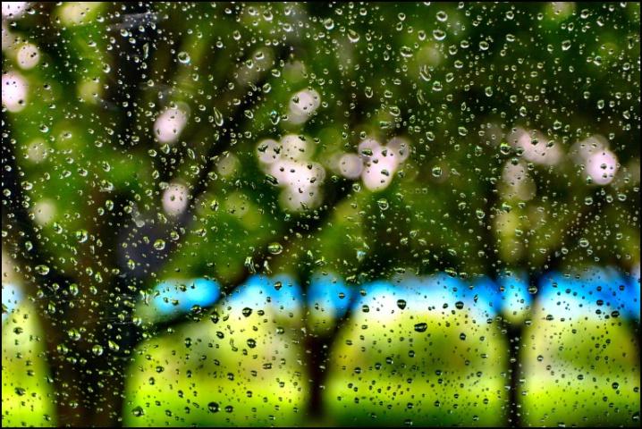Raindrops Fall Upon My Window