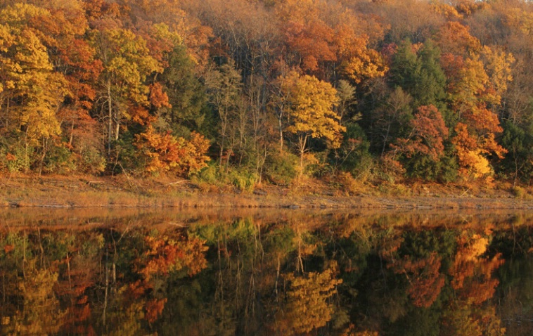 Delaware Reflections II - ID: 1135323 © Nora Odendahl