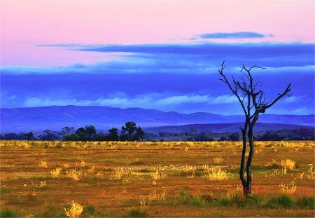 Fliders Ranges South Australia