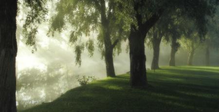 morning at river