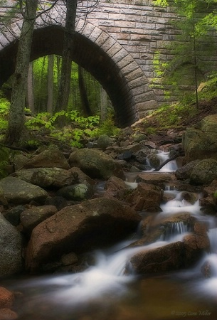 Once Upon A Time - Acadia NP
