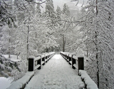 Bridge of Winter