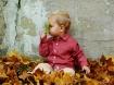 Do leaves smell?