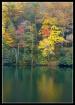 Lake Winnfield Sc...