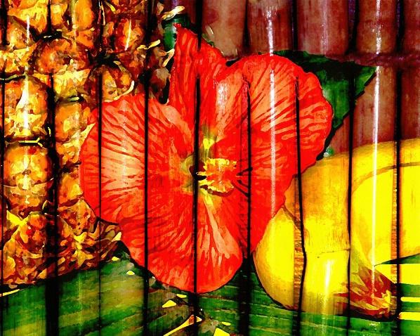 Tropico - ID: 1536151 © Wendy M. Amdahl