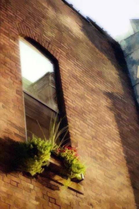 the window box 2