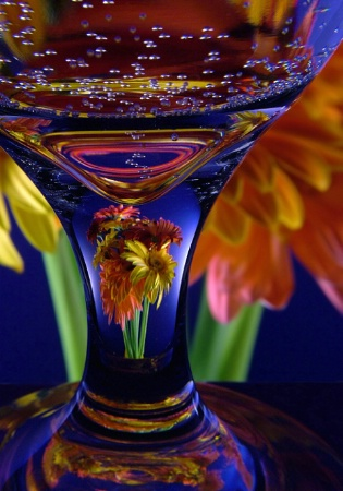 Gerbera Glass