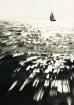 Sailing in Marina...