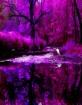 Silk Creek in Mag...