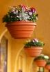 Four flowerpots