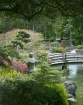 Japanese Tea Gard...