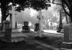 Cemetery Black & ...