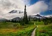 Trail To Rainier