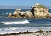 Sea Lion Lookout