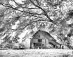 Old Barn on Highw...