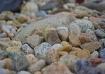 Stones on the bea...
