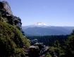 Mt. Hood Lookin G...