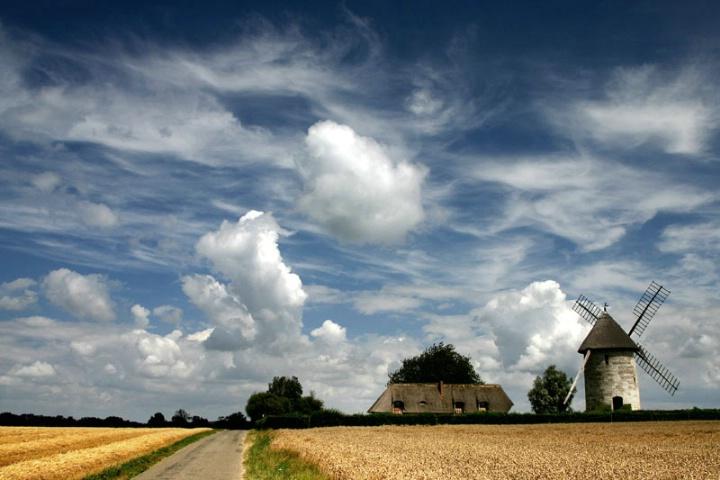 Summer Mill