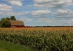 Red Barn in the H...