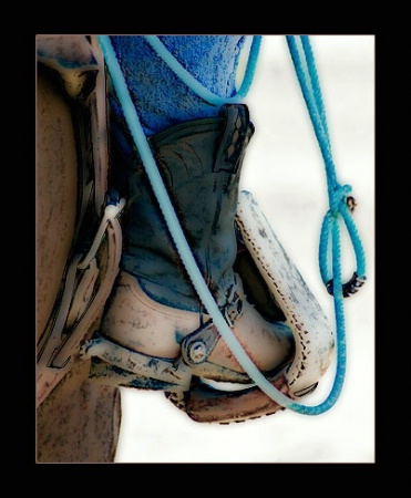 ~ Ready to Rope ~