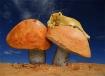 Mushroom lion