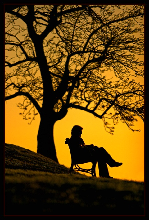 Relaxed in golden evening