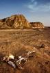 Desert Grave