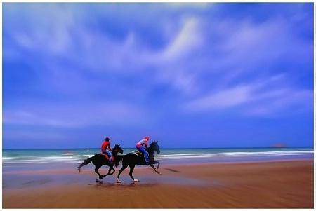 Horse Race !