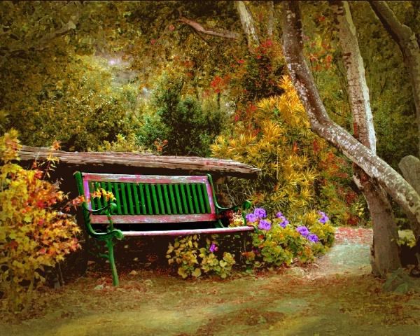 September Solitude - ID: 2762983 © Lynn Andrews