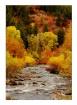 ~~Colored River~~