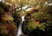 Autumnal Waterfal...