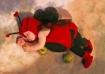 Ladybug Boy