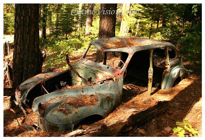 ~ Grandpas Wrecked Car No Joke! ~ - ID: 2812651 © Paul Cutino