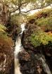 Irish Autumnal Wa...