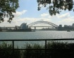 Postcard from Syd...