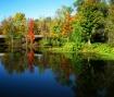 Autumn at the Pon...