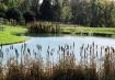Autum Pond #2