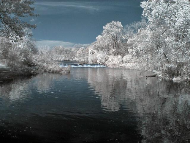 Warrenville Woods Infrared Image
