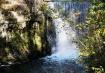 Cedarville falls