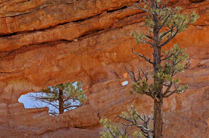 Bryce Canyon Window