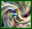 DragonFly Twist