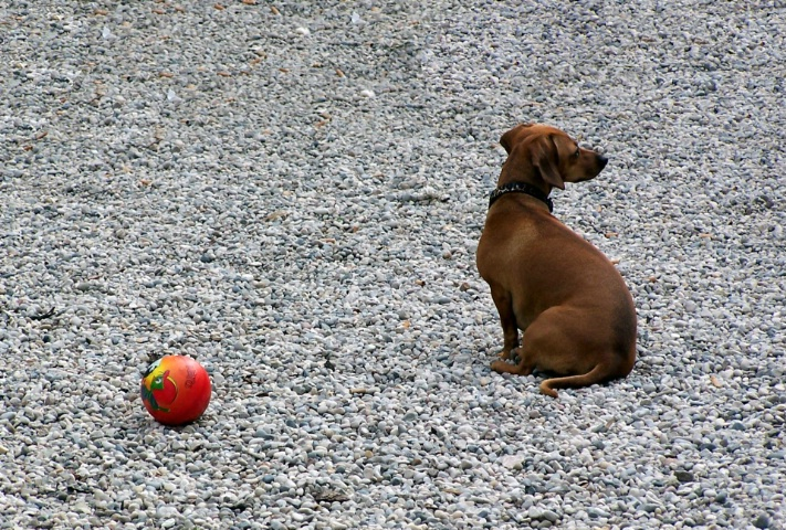 I don't wanna play with the ball ...