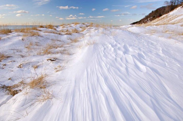 Winter Saugatuck Dunes