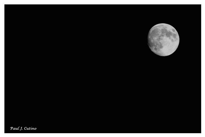 ~ Moon in Black ~ - ID: 2989715 © Paul Cutino