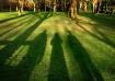 3 Shadows.jpg